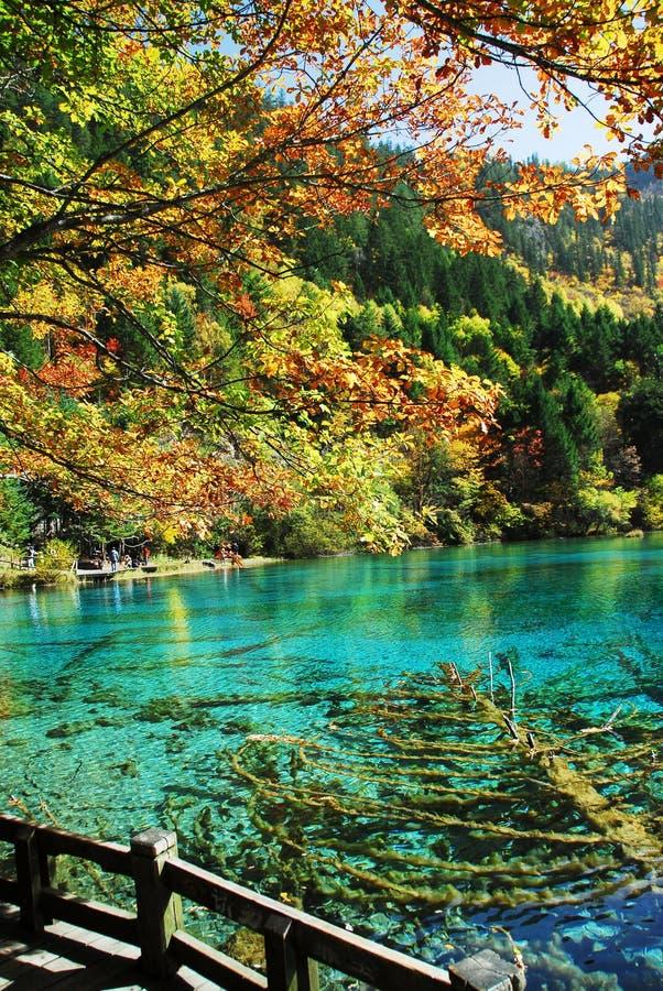 Free Wu Hua Lake In Autumn Stock Photos - 7116463