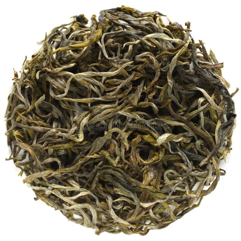 Wu Liang Mountain Certified Organic Mao Feng Green Tea royaltyfria foton