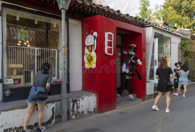Wudaoying Hutong在北京,中国,是其中一商业hutongs在北京 库存照片