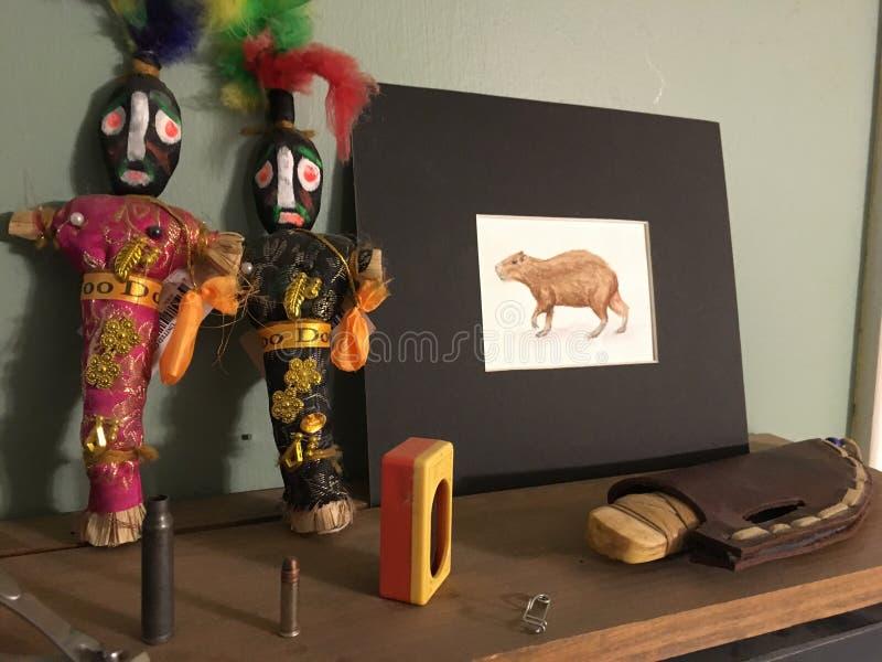 Wudu, kapibary i bizonu kość, obrazy stock