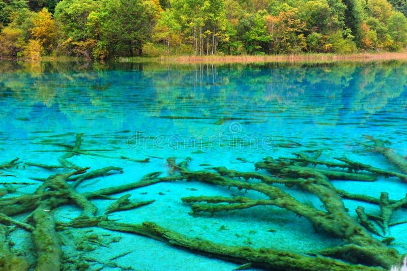 Wuhuahai do lago no jiuzhaigou imagens de stock royalty free