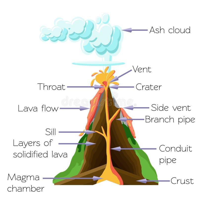 Wulkanów cros sekcji diagram odizolowywający na białym tle ilustracja wektor