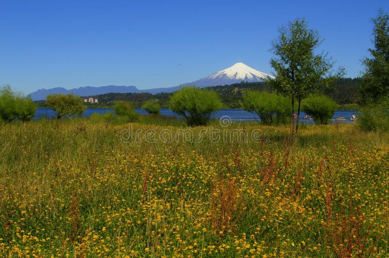 Download Wulkan Villarica Chile obraz stock. Obraz złożonej z krzaki - 57673575