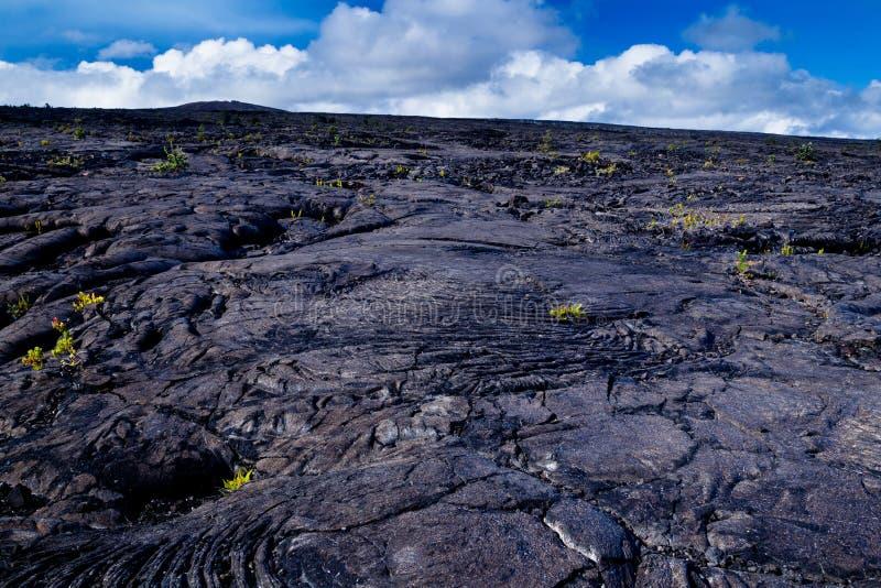 wulkaniczna krajobrazu obraz stock