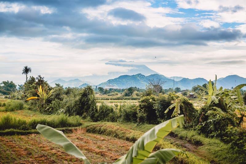 Wulkanu i ryż pola w Bali Góry i chmurny niebo obraz royalty free