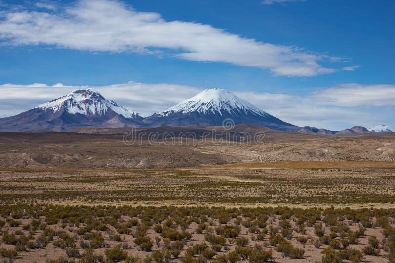 Wulkany na Altiplano obrazy royalty free