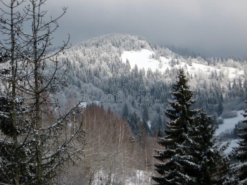 Wunderbare Berglandschaft #5 lizenzfreies stockfoto