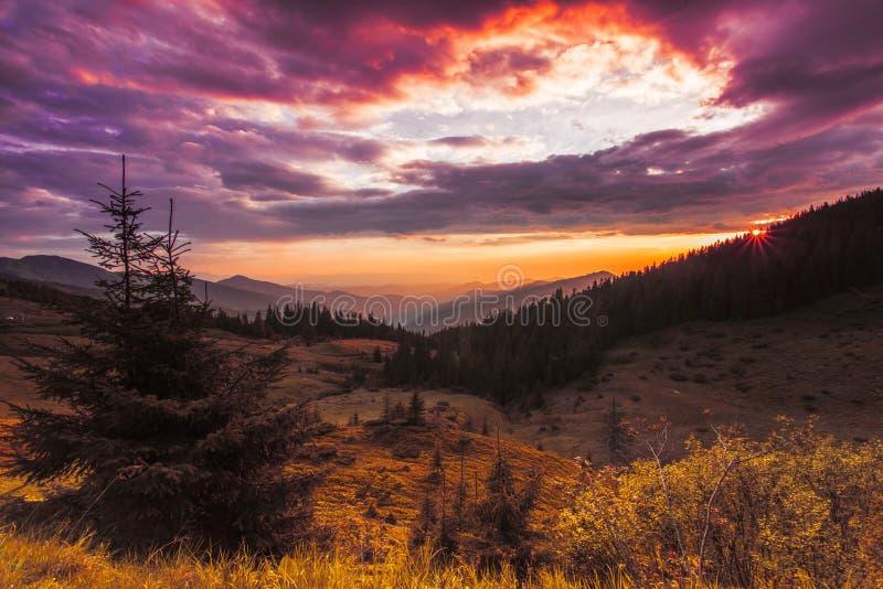 Wunderbare Sommerdämmerungslandschaft, Wiese auf dem Hügel des Berges auf drastischem bewölktem Morgenhimmel des Hintergrundes, f lizenzfreie stockbilder