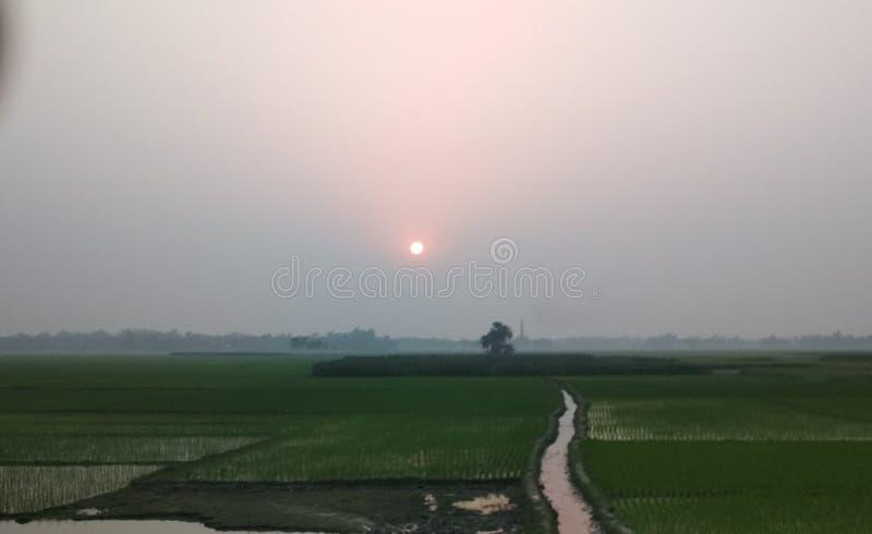 wunderbarer Sonnensatz stockfoto