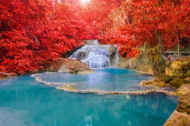 Wunderbarer Wasserfall und rotes Blatt im tiefen Wald an Erawan-waterf lizenzfreies stockbild