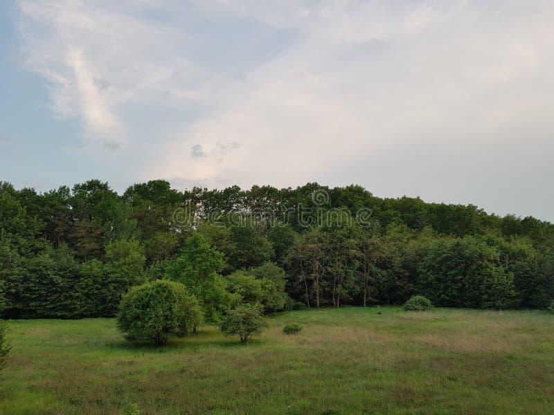 Wundervolle Landschaft stockfoto