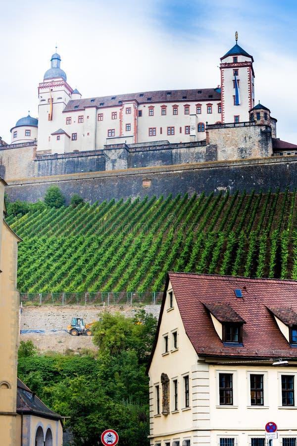 Wurzburg city and vineyards royalty free stock image