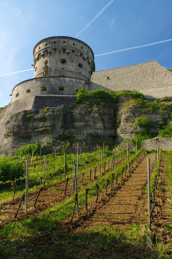 WURZBURG, DUITSLAND - MEI 11, 2015: Een mening van de Vesting of Festung van Marienberg in de Herfst met wijngaard vooraan royalty-vrije stock foto's