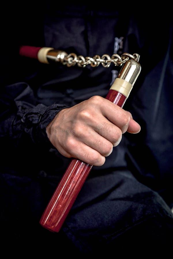 Wushu royaltyfria bilder