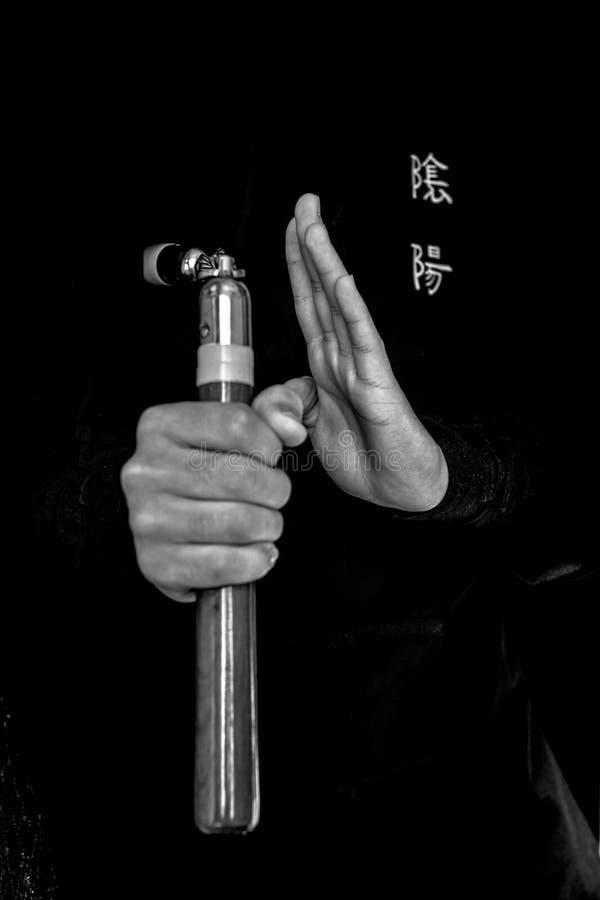 Wushu expertis med nunchuck fotografering för bildbyråer
