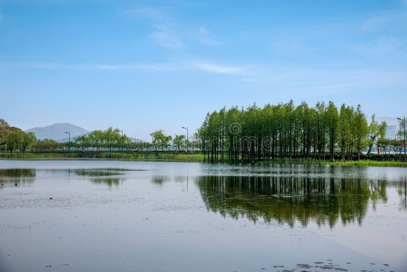 Wuxi Taihu Lake Yuantouzhu pastoral scenery stock image
