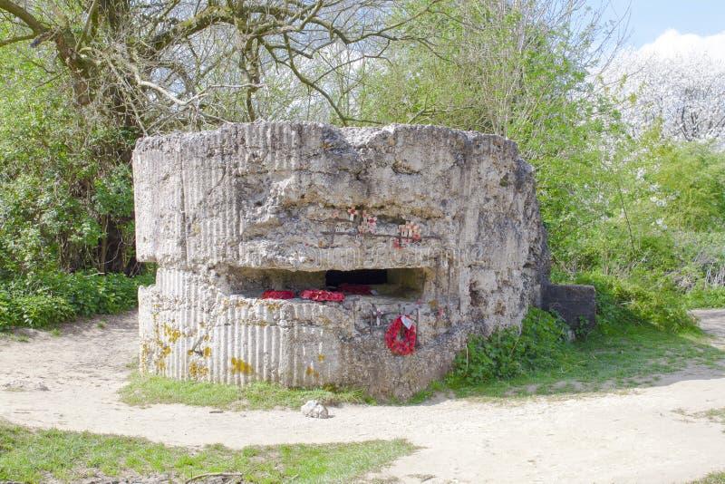WW1 бункер холма 60 в мировой войне Бельгии канавы. стоковые фотографии rf