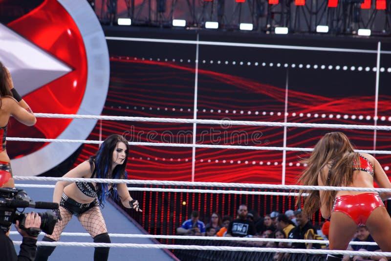 WWE Diva Paige en Nikki Bella aan lock-up in ring tijdens markering wordt geplaatst die stock fotografie