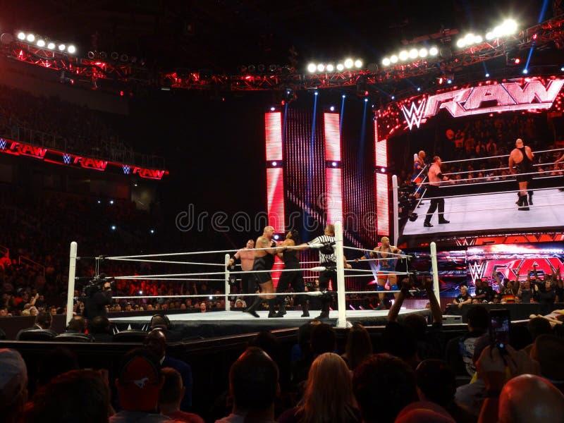 WWE-Grote de Worstelaar toont grepen Roman Reigns met Kane in de hoek royalty-vrije stock afbeeldingen