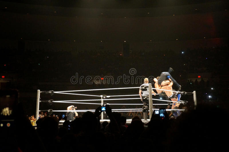 WWE-Worstelaar Seth Rollins en AJ Stijlen dubbele superplex Dean Am royalty-vrije stock afbeeldingen
