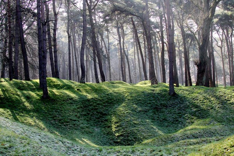 WWI Battlefield Vimy Ridge. The shell hole and trench landscape of the WW1 battlefield on the western front at Vimy Ridge now grown over by forest royalty free stock photos