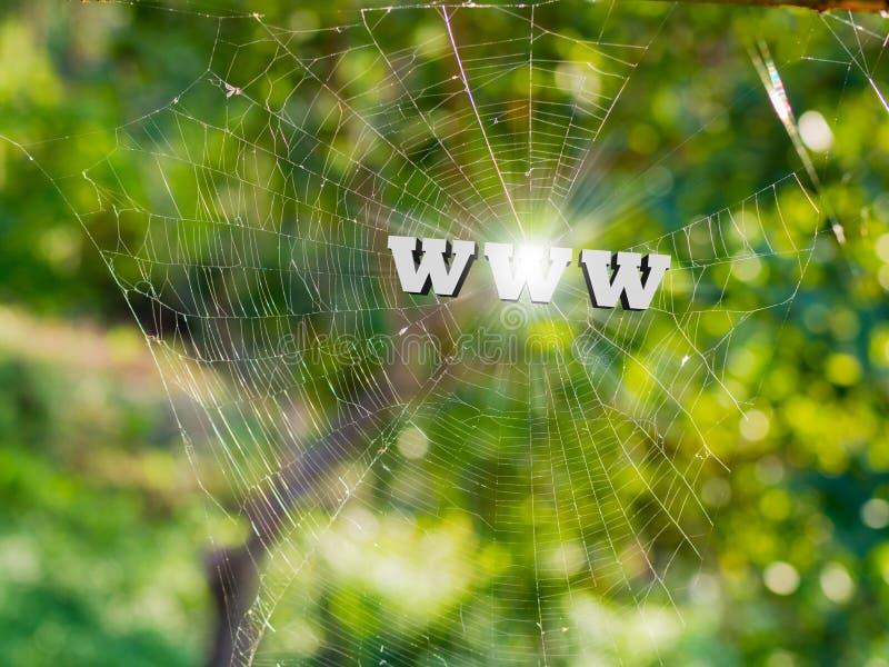 WWW 3d tekst na pająk sieci, sieci komputerowej i informaci onli, fotografia stock