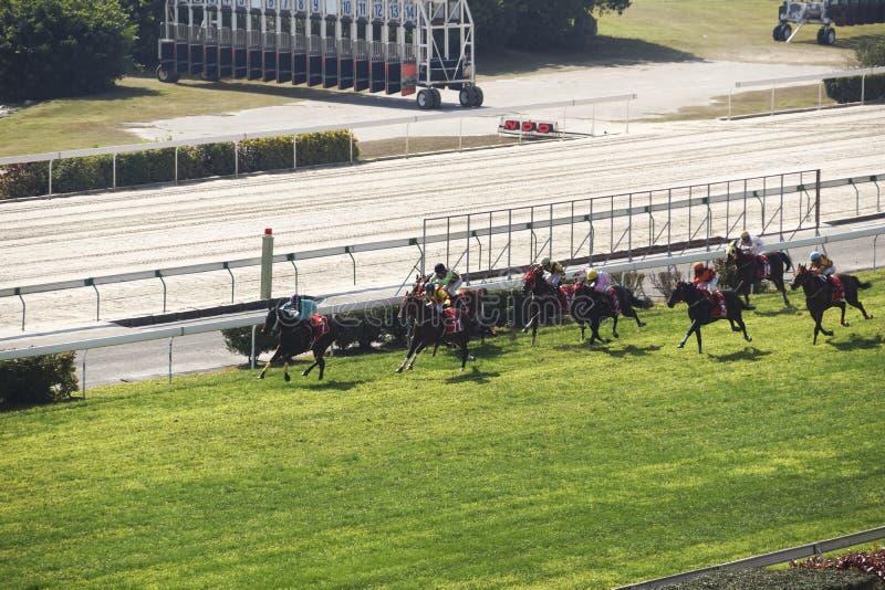 Wyścigi konny zdjęcia royalty free