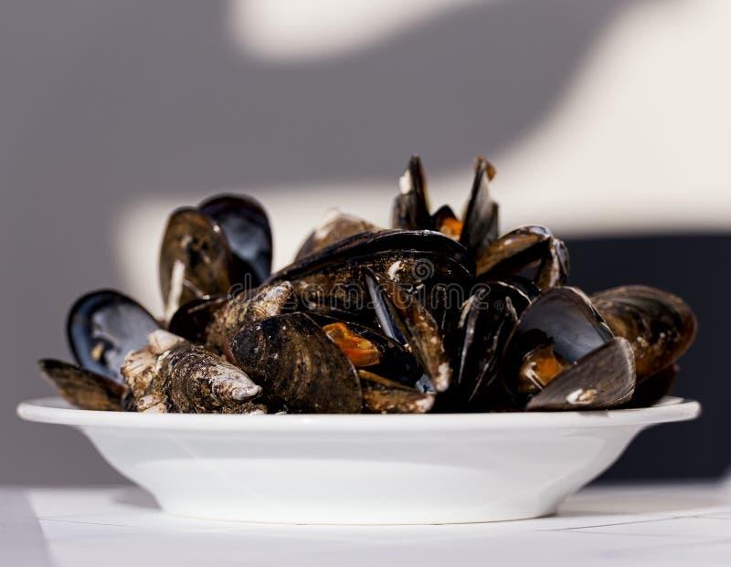 Wyśmienici mussels na talerzu obrazy stock
