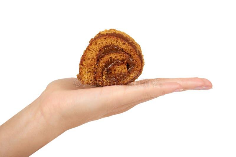 Wyśmienicie czekolada z dojnym Szwajcarskiej rolki tortem w ręce odizolowywającej na białym tle, dom zrobił deserowi zdjęcia stock