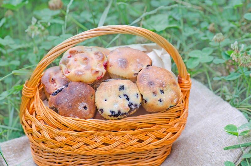 Wyśmienicie domowej roboty czarnych jagod muffins z jagodowymi owoc zdjęcie stock