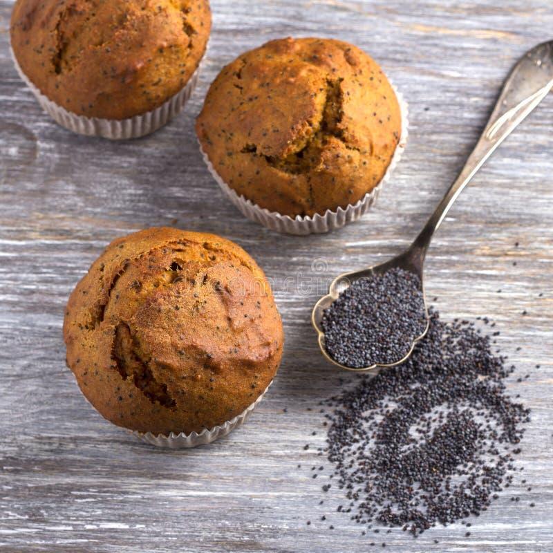 Wyśmienicie domowej roboty dyniowi muffins z cynamonowymi i makowymi ziarnami zdjęcie royalty free
