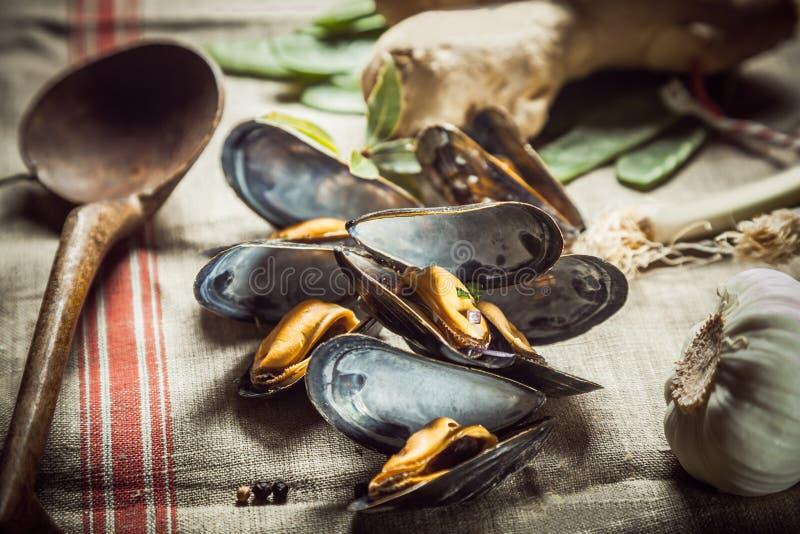 Wyśmienicie kraszonego cząberu morscy mussels obrazy royalty free