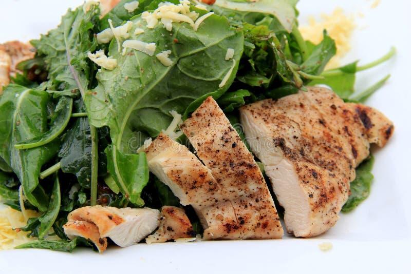 Wyśmienicie sałatka griiled kale i kurczak zdjęcie stock