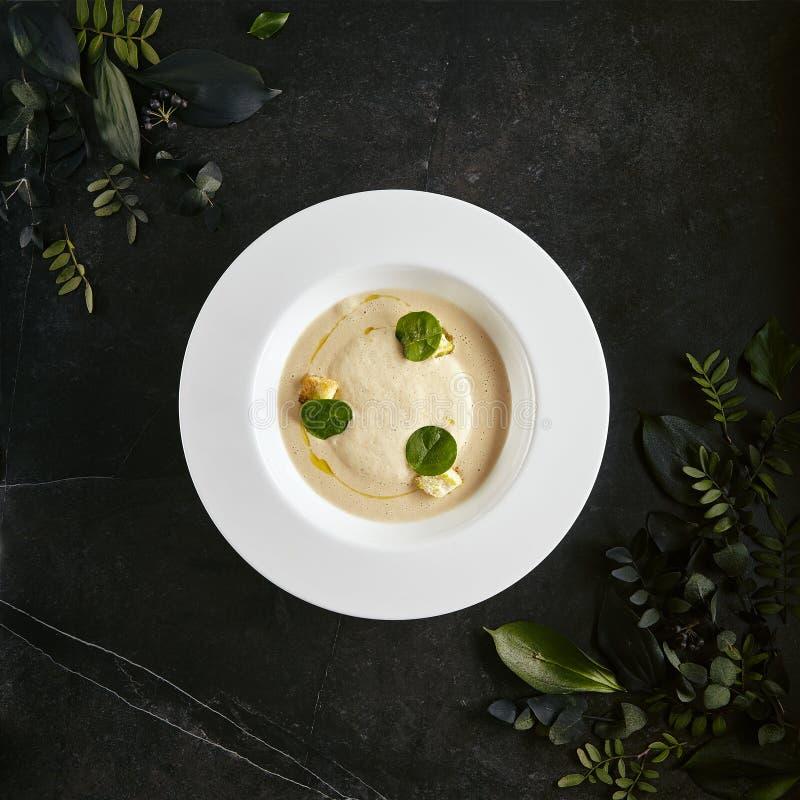Wyśmienitej porcji restauracji Biały talerz Kremowa Cappuccino polewka z Porcini pieczarkami i Truflowym Odgórnym widokiem obraz stock