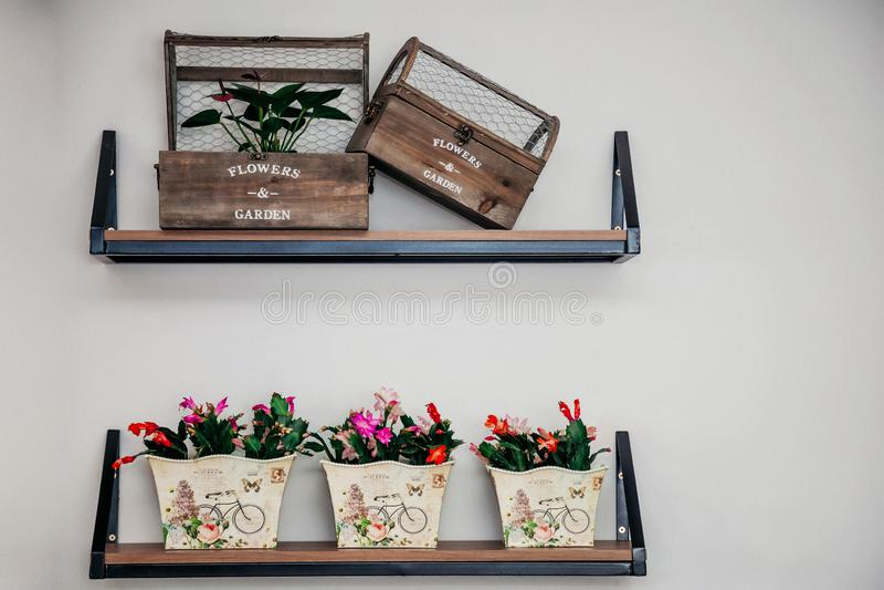 Wyśmienity kwiatu sklepu ścienny pokaz zdjęcie royalty free
