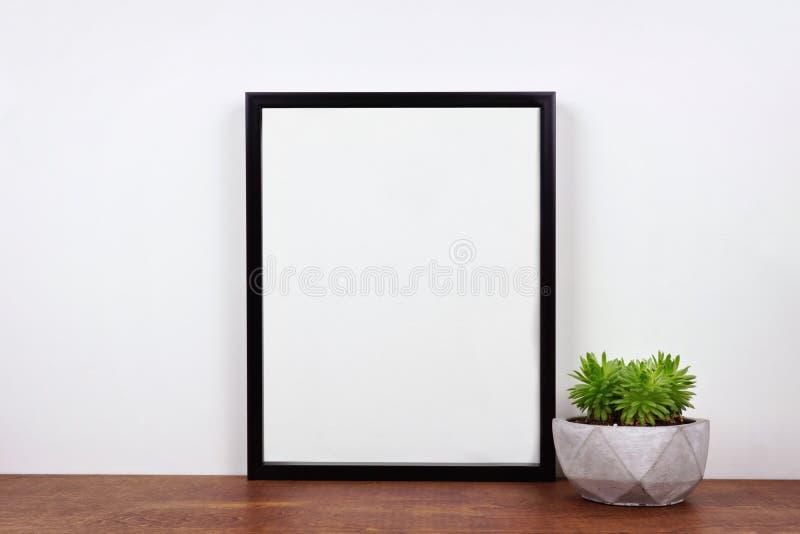 Wyśmiewa w górę czerni ramy przeciw biel ścianie z tłustoszowatą rośliną na drewnianej półce obraz royalty free