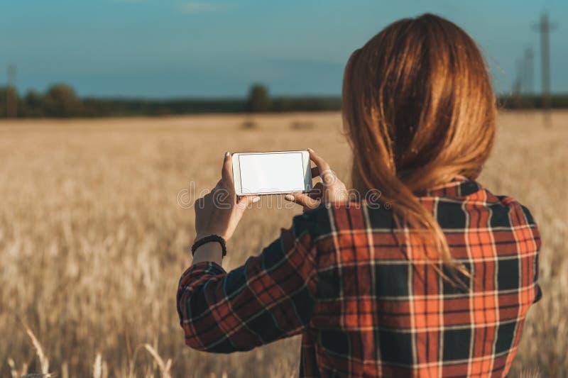 Wyśmiewa w górę smartphone w ręce dziewczyna na tle pole, zdjęcie royalty free