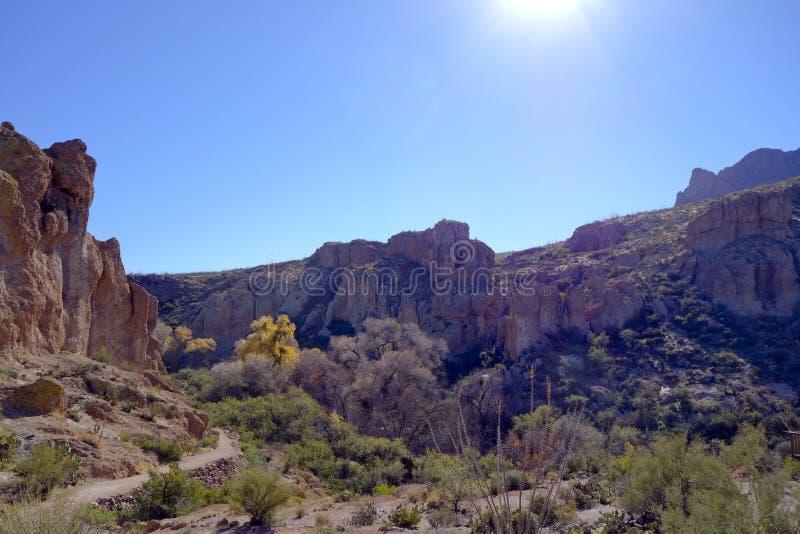 Wyżowy Sonoran Naturalny teren fotografia stock