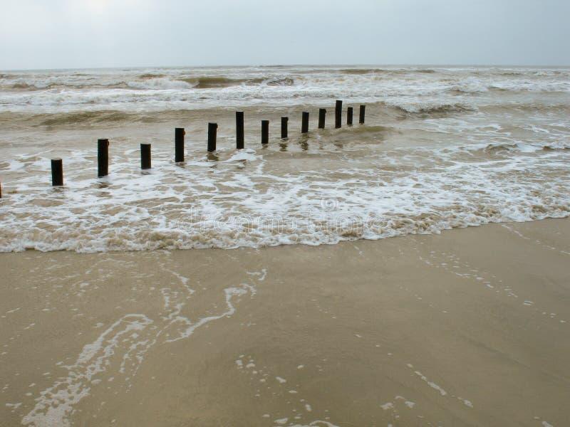 Wyślij Morza Drewniany Zdjęcia Royalty Free