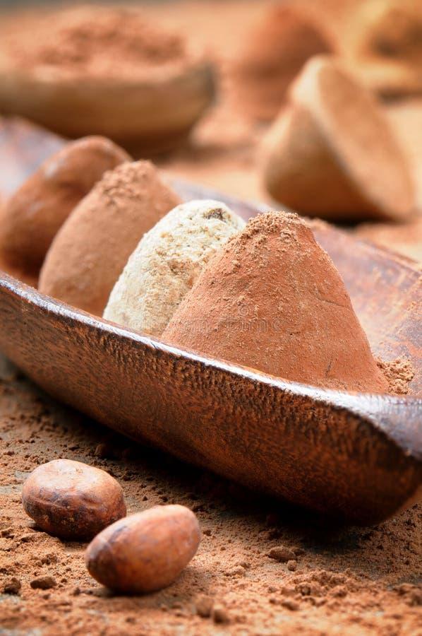wybór czekoladowe trufle zdjęcie royalty free