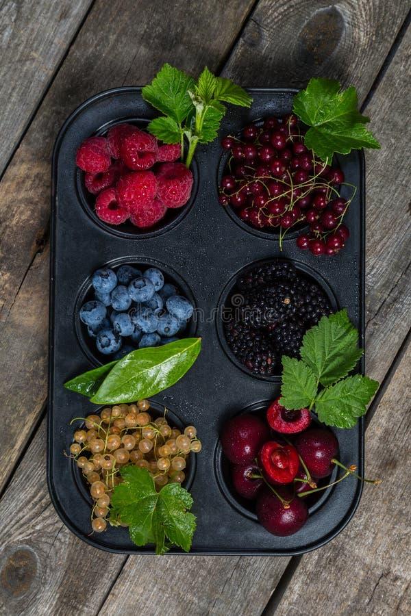 Wybór jagody w babeczki formie - zdrowy deserowy pojęcie zdjęcia stock