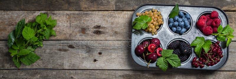 Wybór jagody w babeczki formie - zdrowy deserowy pojęcie zdjęcia royalty free