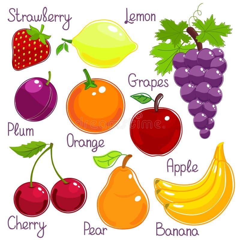 Wybór kolorowa tropikalna owoc z etykietkami ilustracji