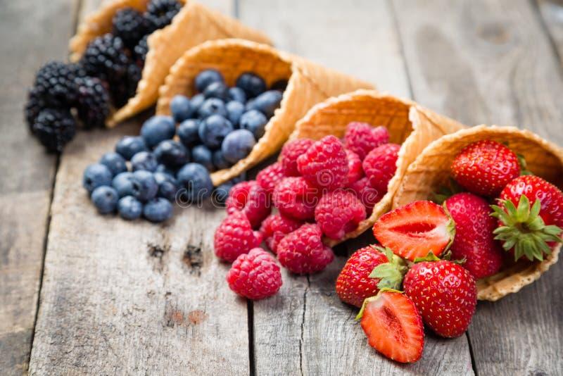Wybór lato jagody w lodów rożkach zdjęcie royalty free
