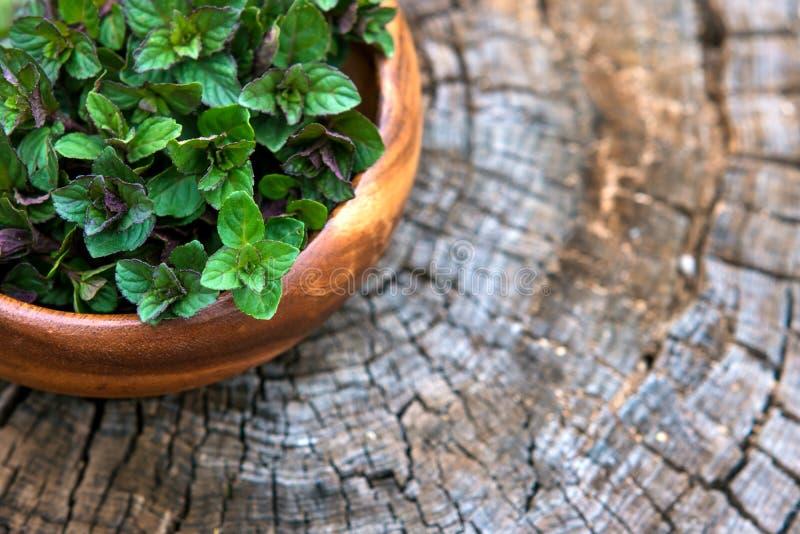 Wybija monety w małym koszu na naturalnym drewnianym tle, miętówka, zdjęcie stock