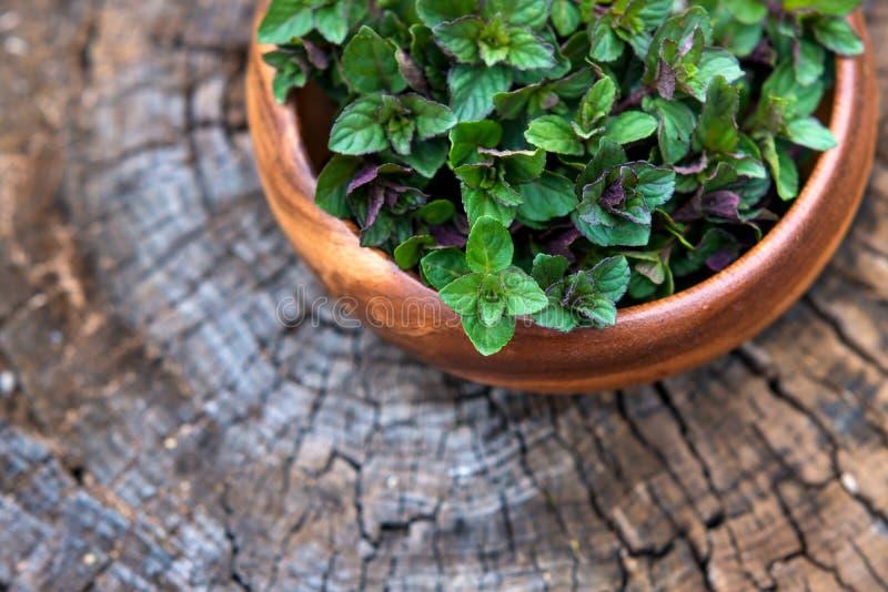 Wybija monety w małym koszu na naturalnym drewnianym tle, miętówka, obraz stock