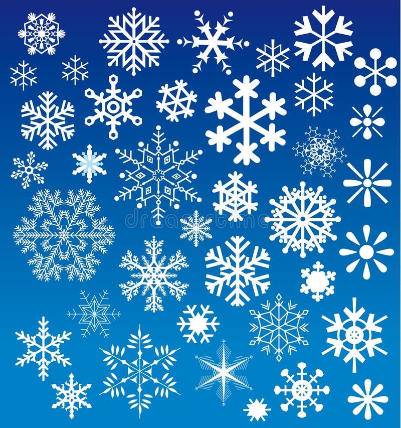 wyborów płatków śnieg royalty ilustracja