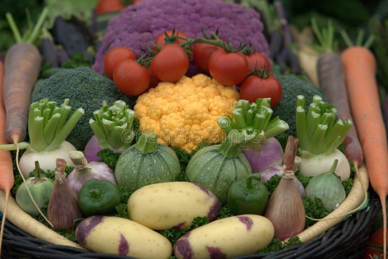 wyborów zdrowi warzywa obraz stock