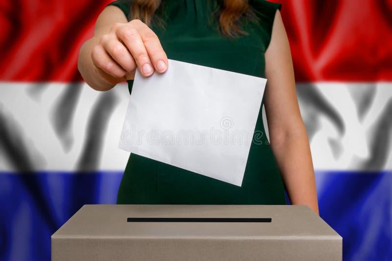 Wybory w holandiach - głosujący przy tajnego głosowania pudełkiem zdjęcie stock