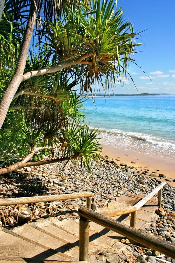 wybrzeża australii słoneczko obrazy stock